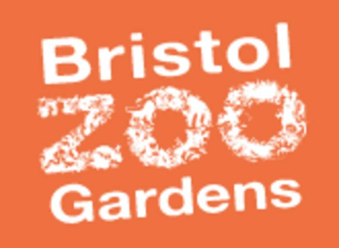 Bristol Zoo: