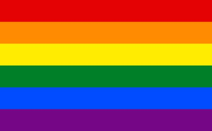 LGBT: Initialism for lesbian, gay, bisexual, and transgender persons